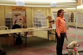 """Шатри и кетъринг оборудване под наем в Софийски университет """"Св. Кл. Охридски"""" 31.05.2014г."""