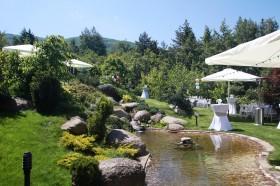 Сватба в частен двор-кв.Бистрица – 30.05.2015г.