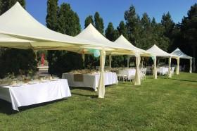 Сватба в Гр.Козлодуй – 9.07.2016г.